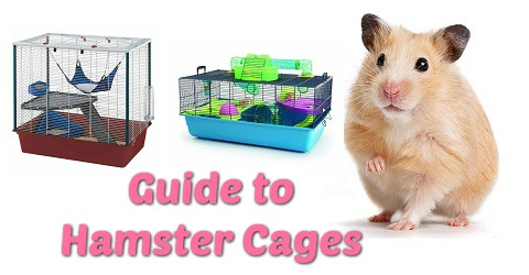 guide to hamster cages