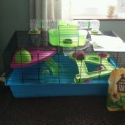 hamster-heaven-cage