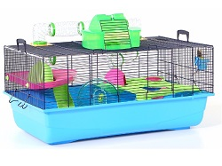 shop en petcostore category small animal hutches