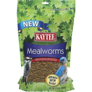 Kaytee-Mealworms-176-Ounce-Pouch-0